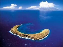 [마우이 2박 숙박][풀패키지] 하와이 7일
