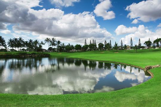 [18홀] 와이켈레 골프클럽 하와이 6일