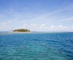 외딴 섬나라, 피지