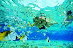 [관광+자유+카네오헤 해양스포츠] 하와이 6일, 7일