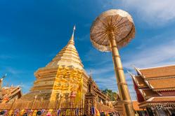[치앙마이] 태국에 찾아온 봄