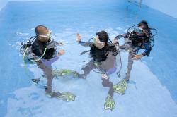 수영장 다이빙 강습