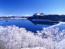北海道自由行五天