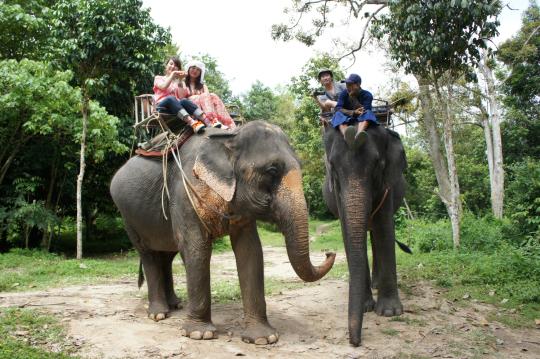 태국 이미지