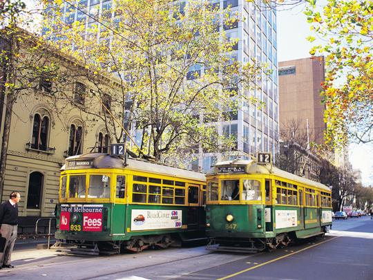멜버른 트램 자료사진(유료트램)