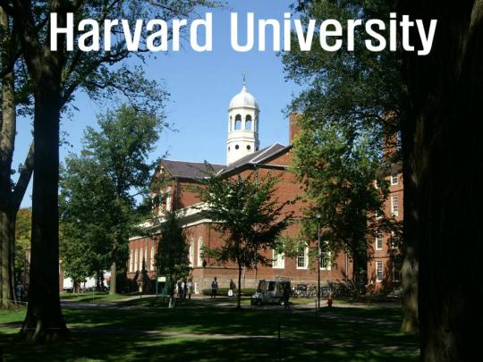 하버드 대학