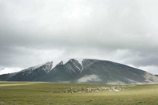 울란바토르(몽골) 테를지 초원