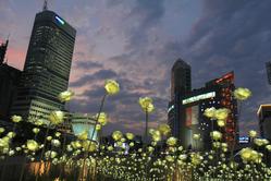 新發現韓國~韓國全覽九日。一人成團