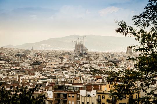 [현지투어+자유] 바르셀로나/테네리페/마드리드 8일 ★지중해의 보석 테네리페 휴양