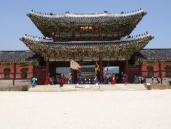 首爾奢華團體五日(首爾、南怡島、京畿道、江原道)