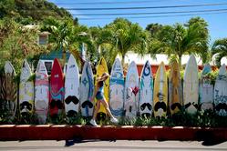 [와이키키리조트] 하와이 자유여행 6~8일